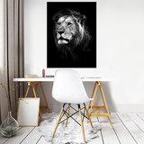 Leeuw Canvas Schilderij PP11768O1_