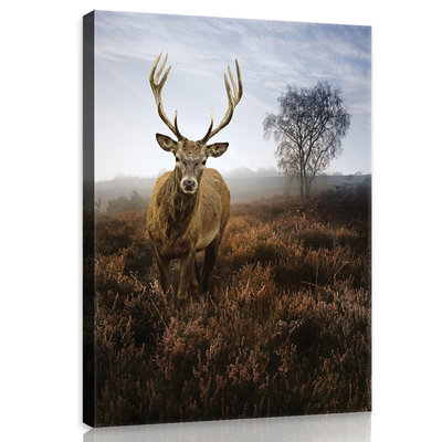 Deer on the Misty Meadow Canvas Schilderij PP10319O1