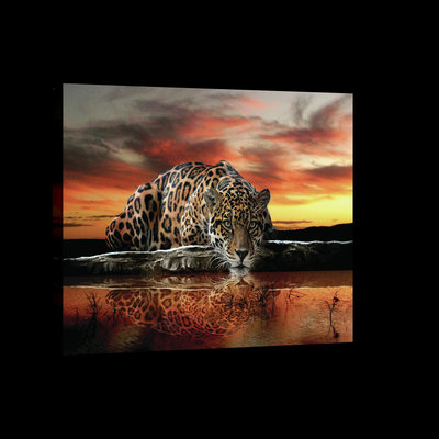 Jaguar Against the Setting Sun Canvas Schilderij PP101O1
