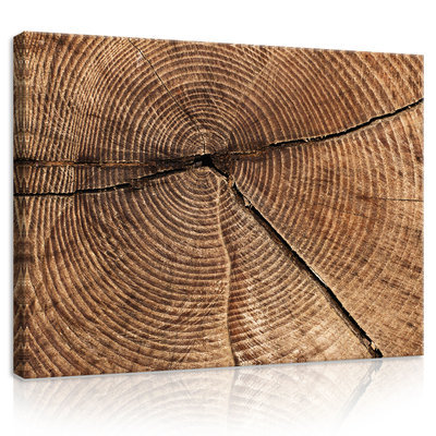 Cross Section of Tree Trunk Rings Canvas Schilderij PP20154O1