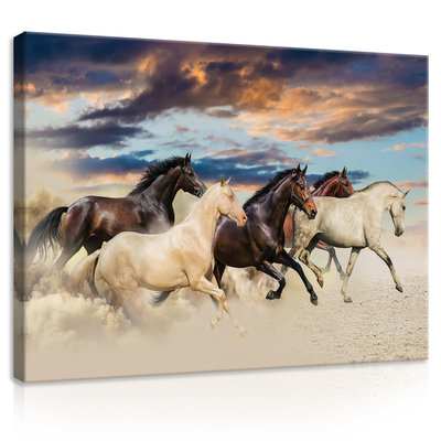 Galloping Mustangs Canvas Schilderij PP20305O1