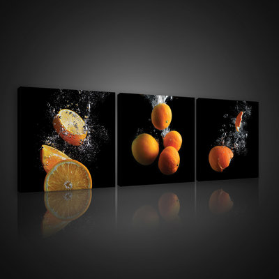 Oranges Canvas Schilderij PS10547S13