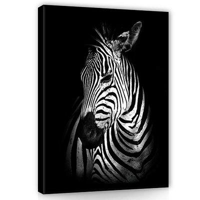 Zebra Canvas Schilderij PP11767O1