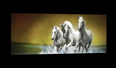 White Horses Galloping on Water Canvas Schilderij PP20300O3