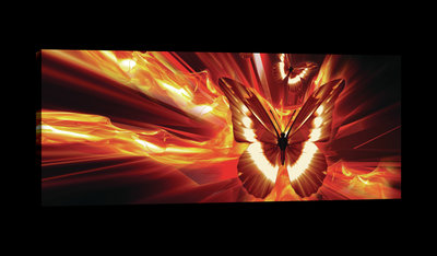 Flaming Butterflies Canvas Schilderij PP20292O3