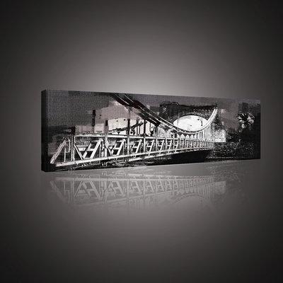 Grunwaldzki Bridge Canvas Schilderij PP10505O3