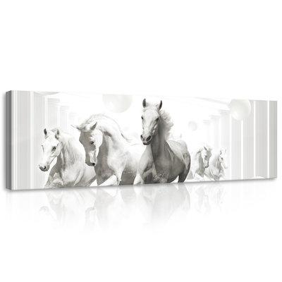Abstract horses Canvas Schilderij PP10154O3
