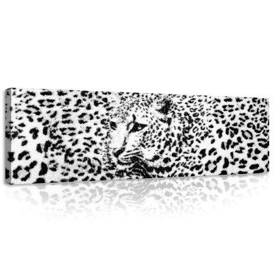Black and White Cheetah Canvas Schilderij PP20306O3