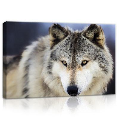 Snow Wolf Canvas Schilderij PP20308O4
