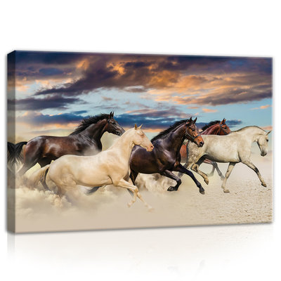 Galloping Mustangs Canvas Schilderij PP20305O4
