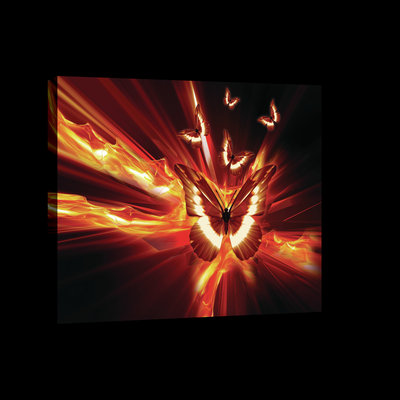 Flaming Butterflies Canvas Schilderij PP20292O4