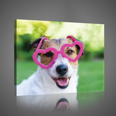 Dog in Pink Glasses  Canvas Schilderij PP10432O4