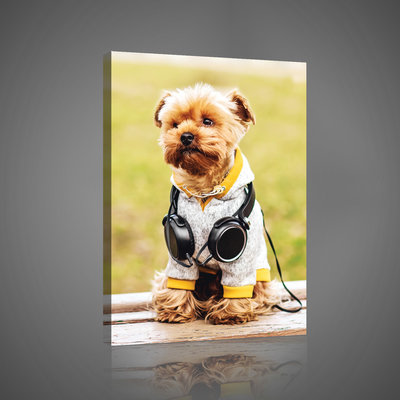 Little Puppy with Headphones Canvas Schilderij PP10431O4