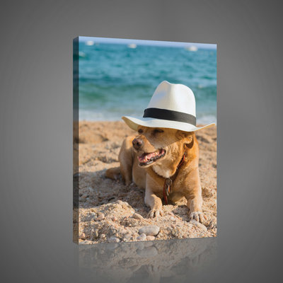 Dog in a Hat on a Beach Canvas Schilderij PP10399O4