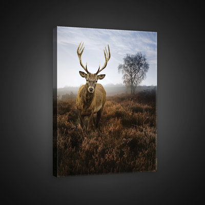 Deer on the Misty Meadow Canvas Schilderij PP10319O4