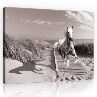 Horse Galloping on the Beach Canvas Schilderij PP10229O4