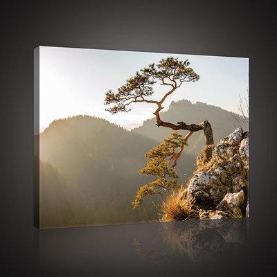 The Pieniny Mountain Canvas Schilderij PP10511O4