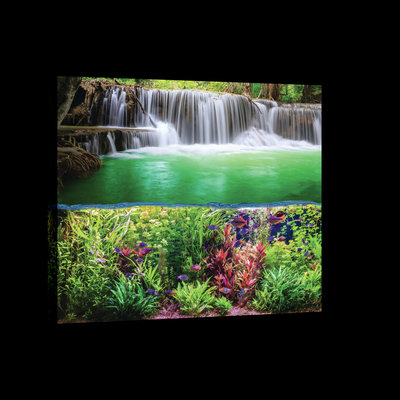 Plants, Fish and Waterfall Canvas Schilderij PP20057O4