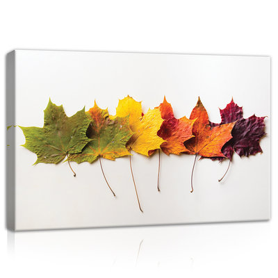 Leaves in autumn Canvas Schilderij PP11719O4