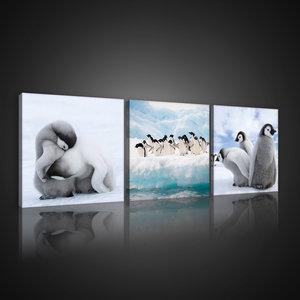 Penguins Canvas Schilderij PS10536S13