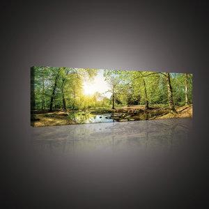 Green Forest Canvas Schilderij PP10508O3