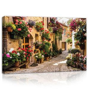 Street with flowers Canvas Schilderij PP20527O4